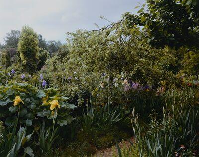 Stephen Shore, 'Garden View', ca. 2002