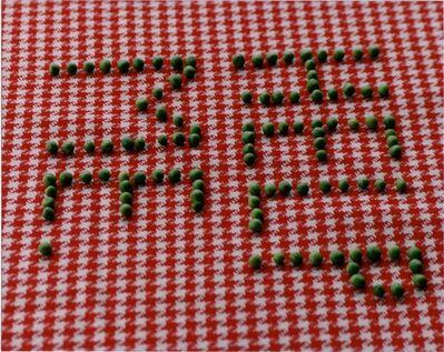 Antoni + Alison, ''Help Me Peas'', 2001