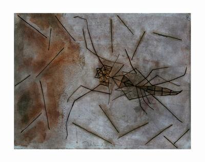 Francisco Toledo, 'Insectos', S/F
