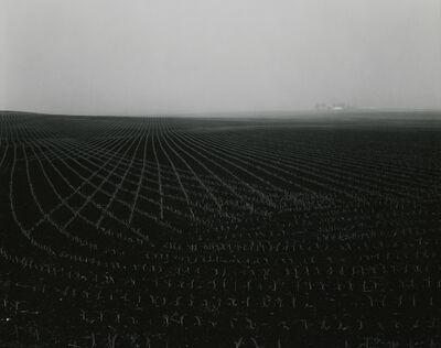 Rhondal McKinney, 'untitled, Illinois Landscape', 1980