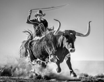 David Yarrow, 'Ain't My First Rodeo', 2021