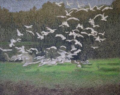 Ahmad Siyar Qasimi, 'The Birds', 2018
