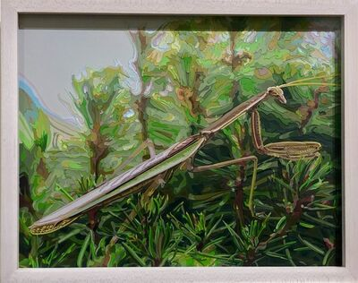 Deborah Claxton, 'Praying Mantis', 2004
