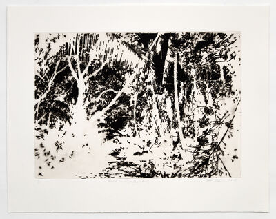 Teresita Fernández, 'Burned Landscape (Puerto Rico)', 2018