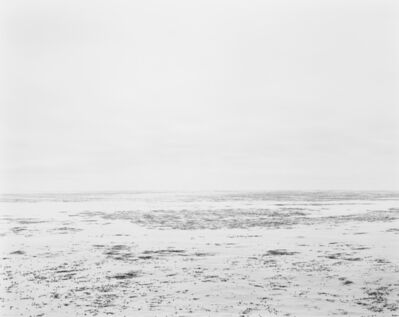 Chip Hooper, 'Kelp', ca. 2010
