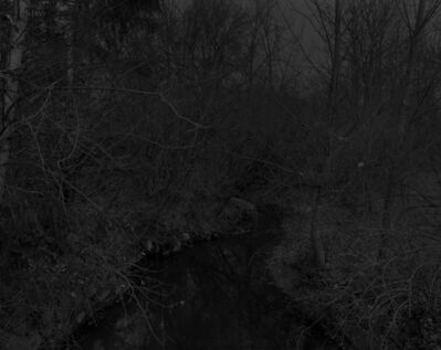 Dawoud Bey, 'Night Coming Tenderly, Black: Untitled #19 (Creek and Trees)', 2017