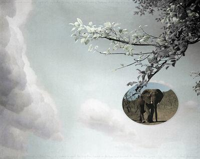 Ian van Coller, 'Elephant', 2004