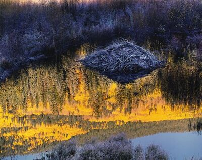 Christopher Burkett, 'Beaver Lodge at Sunrise, Colorado', 1997