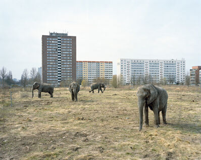 Mitch Epstein, 'Lichtenberg, Berlin from the series Berlin', 2008
