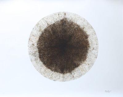 Yasmin Jahan Nupur, 'Solar Eclipse', 2017 -2018
