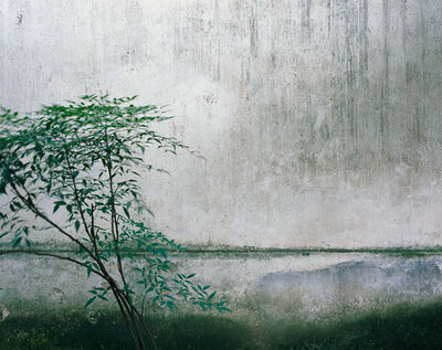Hélène Binet, ''Lingering E' (Suzhou Gardens )', 2018