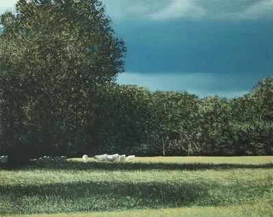 Benoît Trimborn, 'L'orage, le soleil, les vaches', 2020