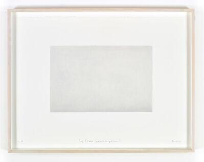 Spencer Finch, 'Fog (Lake Wononscopomuc)'