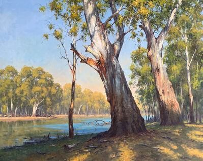 Ted Lewis, 'Morning Shadown Barmah (Murray River)', ca. 2019