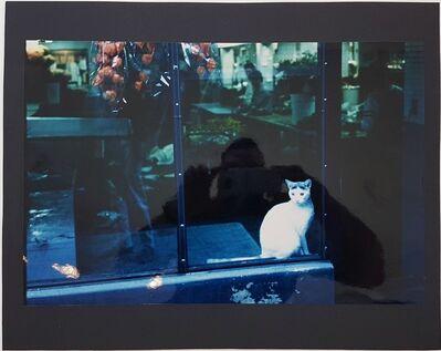 Wolff Buchholz, 'Manhattan - Flower Shop', 1990