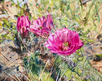 Malou Flato, 'Pink Cactus', 2017