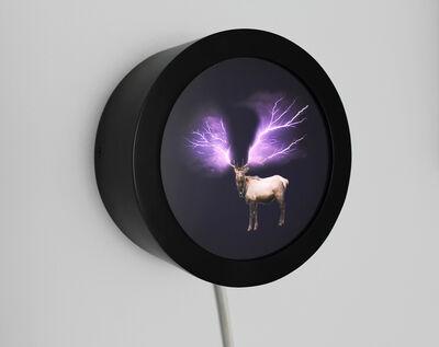 Glenda Leon, 'Espejismos: Alce Iluminado', 2010