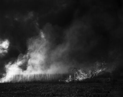 Debbie Fleming Caffery, 'Burning Cane #6', 2006