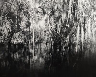 Jaco van Schalkwyk, 'Narcissus', 2018
