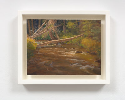 Hilary Harkness, 'Flat Creek in the Forest', 2018