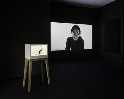 Tao Hui 陶輝, 'Excessive', 2015
