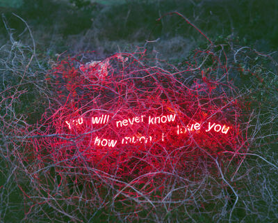 Jung Lee, 'You Will Never Know How Much I Love You', 2014