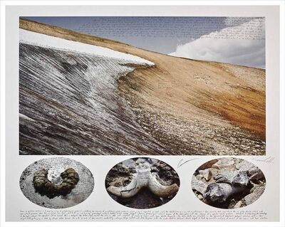 Ian van Coller, 'Bighorn Kill Site in Greater Yellowstone', 2018
