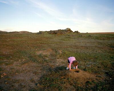 Todd Stewart, 'Prairie Dogs', 2008