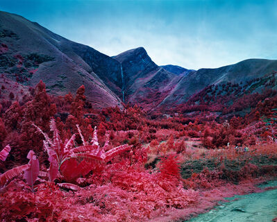 Richard Mosse, 'The Gravity of Numbers', 2015