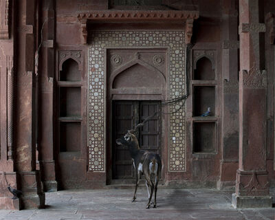 "Karen Knorr, 'Shelter of the World, Fatehpur Sikri. From the series ""India Song""', 2011"
