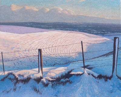 James Lynch, 'Snow, Woodland Hill, Mere', 2019