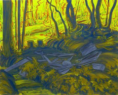 Sigrid Holmwood, 'Remains of Camp by the Creek at Morningstar', 2008