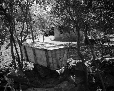 Jo Ractliffe, 'The Beekeeper, Masvingo', 2017