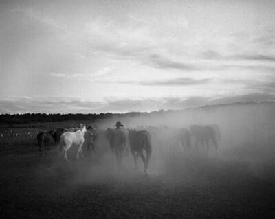Kurt Markus, 'Oro Ranch, Prescott, Arizona', 1983