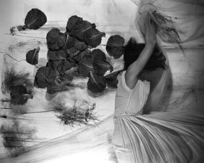 Lauren Semivan, 'July 1', 2013
