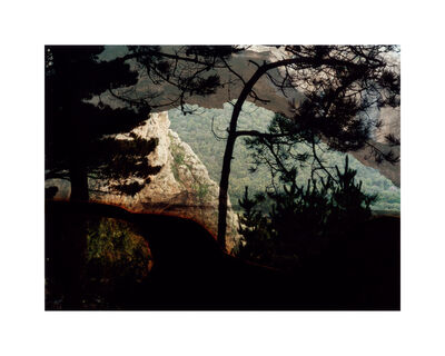 Dafna Talmor, 'Untitled (1212-2)', 2013