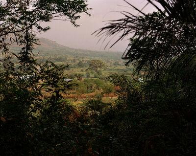 Daragh Soden, 'Big Tree, Volta Region, Ghana', 2018
