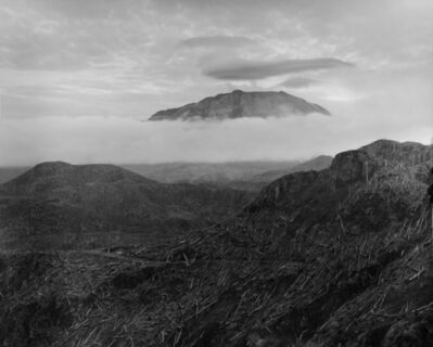 Frank Gohlke, 'View of Mount St. Helens from vicinity of Spud Mountain, 7 miles NW of the crater', ca. 1982