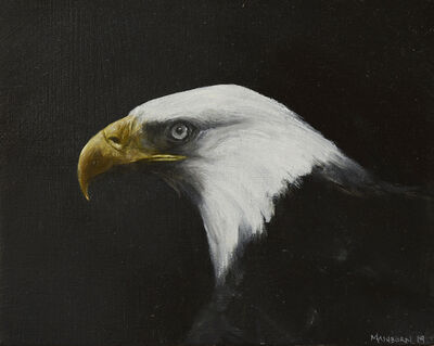 Brian Mashburn, 'Bald Eagle', 2019