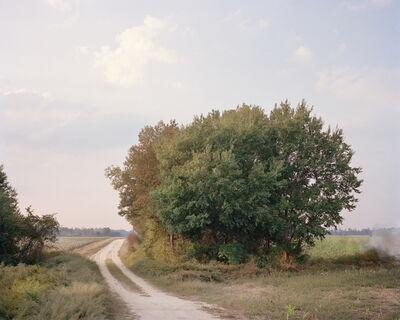 McNair Evans, 'McNair Farms 1868-1992', 2009