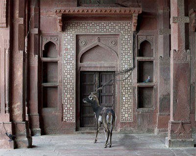 Karen Knorr, 'Shelter of the World, FatehpurSikri'