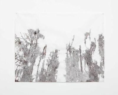 Anne Allen, 'Big Cypress, Caddo', 2013