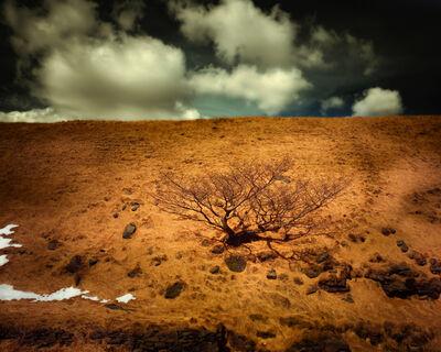 Matthew Murray, 'Greenfield Brook, Saddleworth Moor', 2012