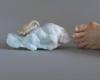 Maegan Hill-Carroll, 'A Proximate Gesture, Golden ratio Rabbit', 2018