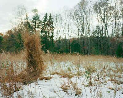 Jeremy Chandler, 'Ghillie Suit (Weeds)', 2013