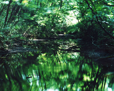 Risaku Suzuki, 'Water Mirror 16, WM-653', 2016