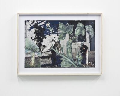 Nikita Kadan, 'Protection of Plants'