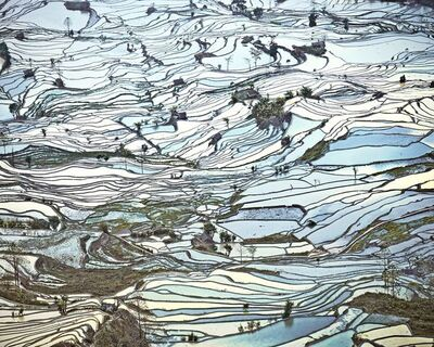 David Burdeny, 'Rice Terraces, (Laohuzui II), Yunnan, China', 2013