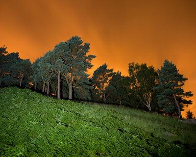 Matthew Murray, 'Chew Piece Plantation, Saddleworth Moor', 2016