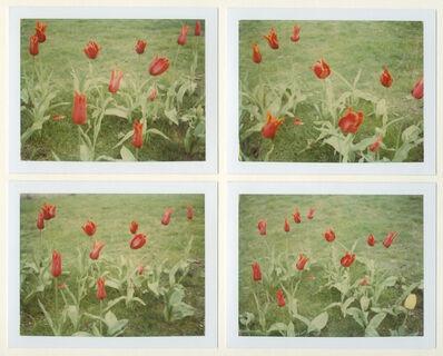 Stefanie Schneider, 'Springtime (Paris)', 1995